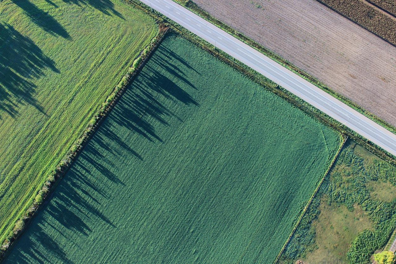 ¿Cuáles son los requisitos para dividir o segregar una finca rústica? - Crops Capital