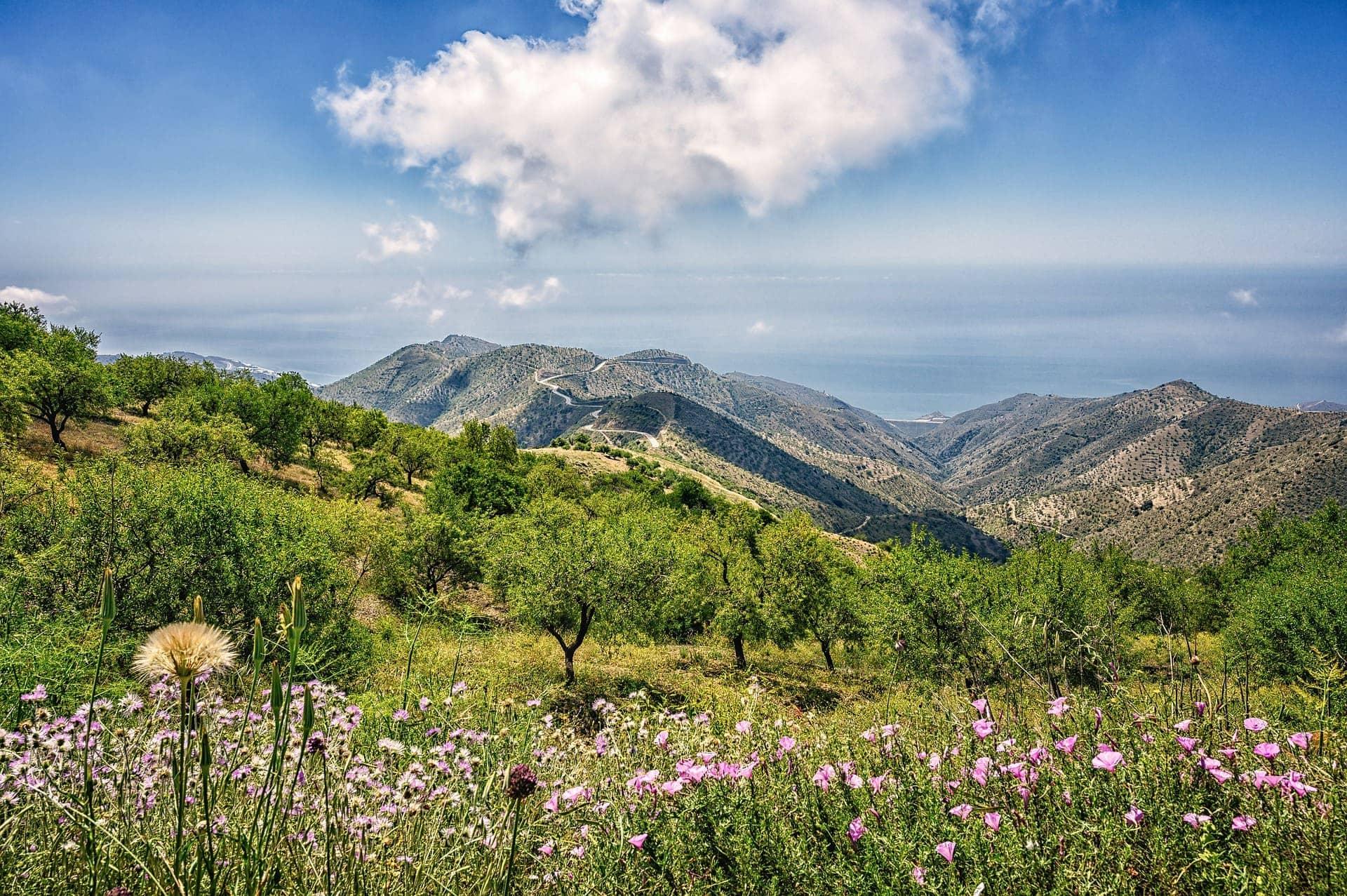 Fincas rústicas en Andalucía