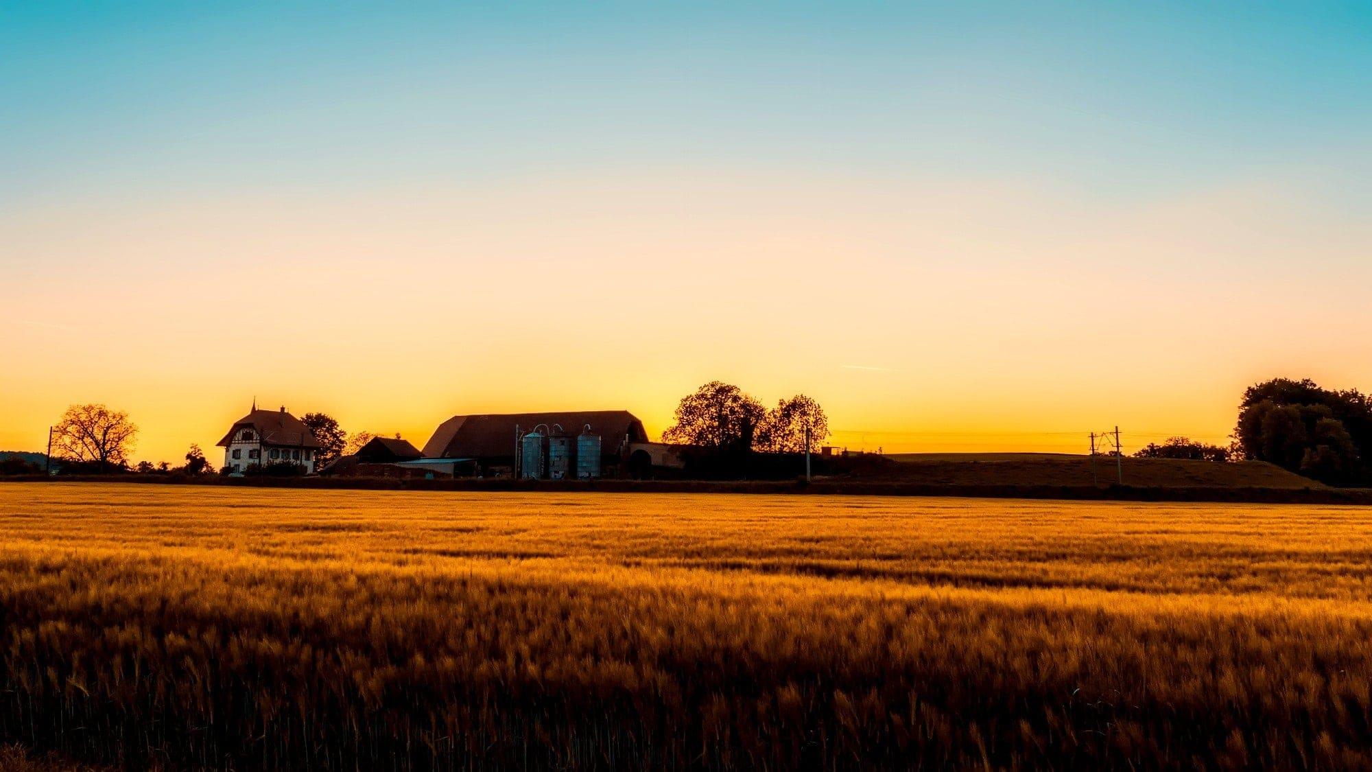 arrendamiento de tierras agrícolas